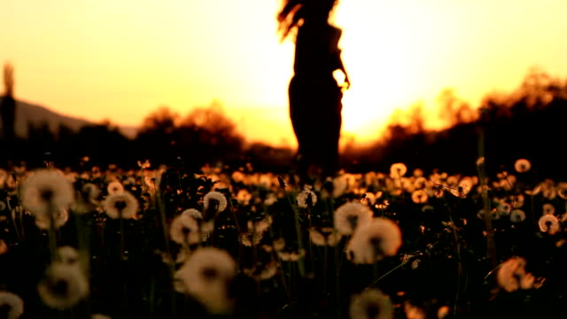 Beautiful Young Woman Running Down Dandelion Field at Sunset HD video