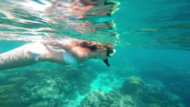 Beautiful young woman swimming in the sea video