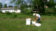 Bee Keeper video