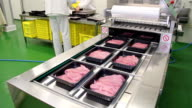 Beef meat on the production line video
