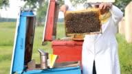Beekeeper with honeycombs video