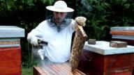 Beekeeping business video