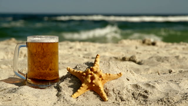 Beer and Starfish on the beach video