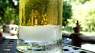 beer bubbles with ice in glass video