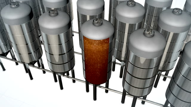 Beer fermentation video