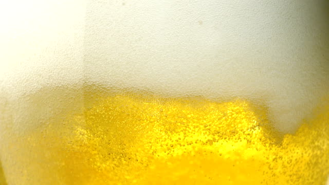 Beer in glass, Close-Up, Slow Motion video