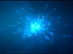Beginning of life. Blue central version. Looped. NTSC video
