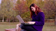 Bench in autumn park. A woman typing on a laptop. video
