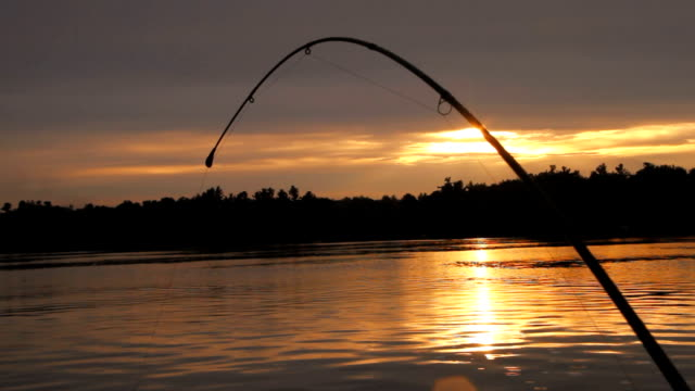 Bent Fishing Rod at Sunset video