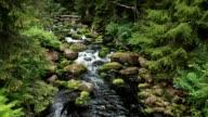 Bergbach - mountain creek video