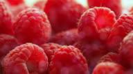 Berries raspberry video