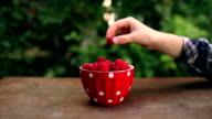 Berries video