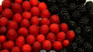 Berry Good video