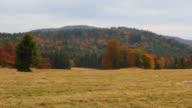 Beskid Mountains in Autumn video