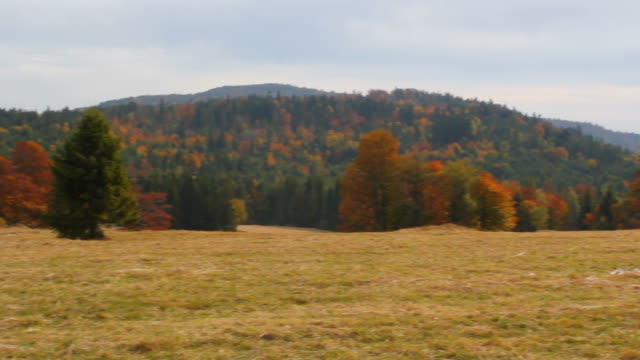 Beskid Mountains in Autumn video
