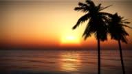 Best Tropical Island Ocean Waves Sunset Palms Beach Cruise Looping video