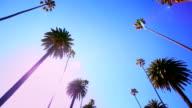Beverly Hills HD Video video