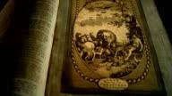 Bible: Adam Names Animals video