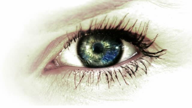 big eye with nice reflection HD video