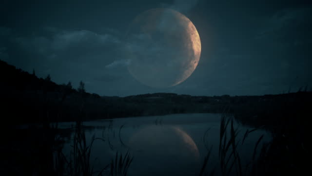 Big moon over a lake. video