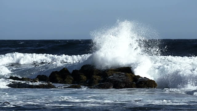 Big Wave in Slow Motion video