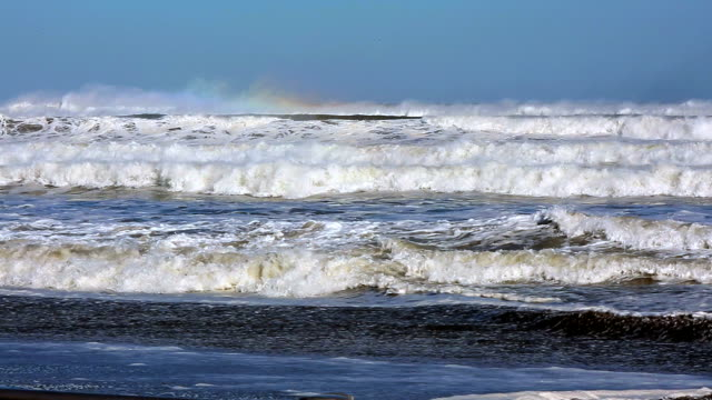 Big wave on the beach video