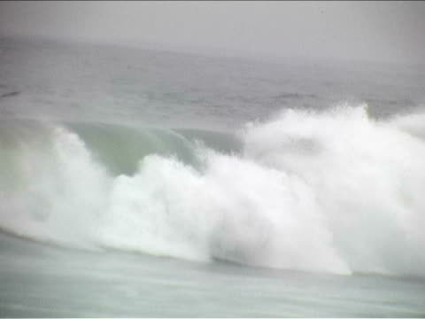 Biggest closeout waves video