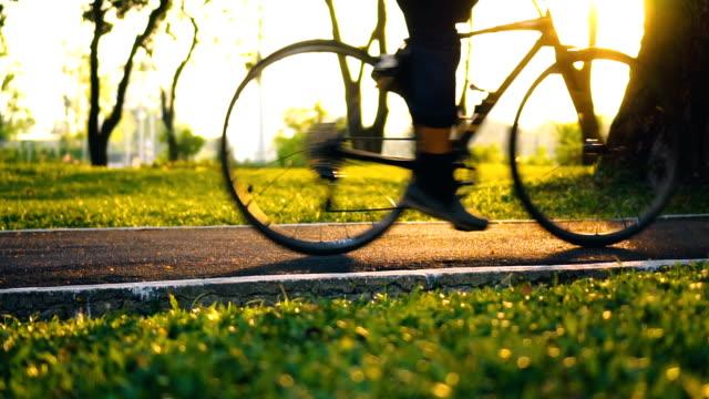 Bike lane in public park at shiny sunshine video