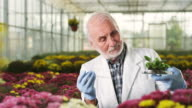 Biologist at greenhouse video