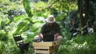Biologist team using a laptop and radio telemetry antenna to track the sound of wild animal video