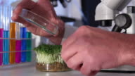 Biotechnology Experiment video