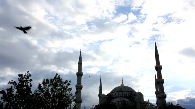 Bird soars above Blue Mosque, Istanbul, Turkey video