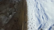 Bird traces on riverside after snow. video