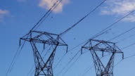 Birds flock on electric pylon and fly off as hawk flies close video