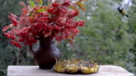 Birds peck seeds on a wooden table in the garden. Standing next to a bouquet with viburnum berries video