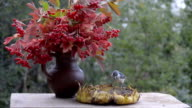 Birds pecking sunflower seeds on a wooden table in the garden video