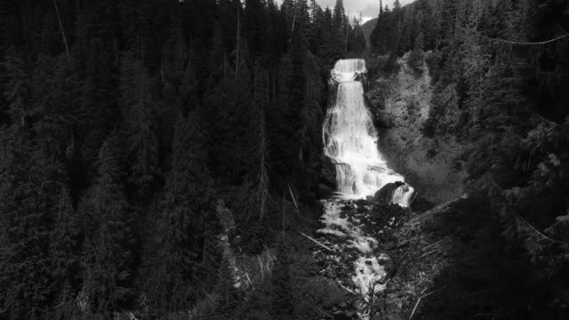 Black and White Aerial in British Columbia Wilderness Flying at Alexander Falls Waterfall video