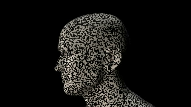 Black and white head turn video