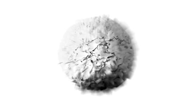 SEMINATURAL SPHERE ALTERATION : black and white (LOOP) video