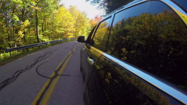 CLOSE UP: Black car driving through colorful autumn forest on sunny day in fall video