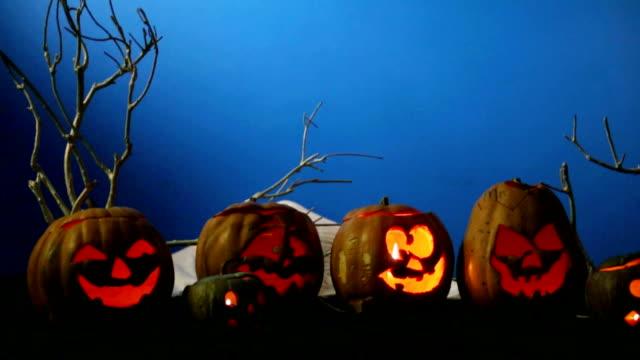 Black Cat And Halloween Pumpkins video