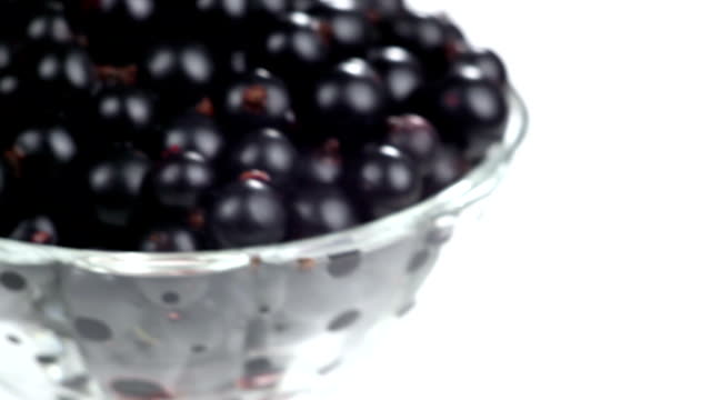 Black Currants in a Glass video