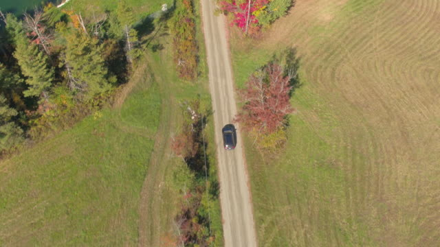 AERIAL Black SUV car driving past colorful trees and meadow fields in sunny fall video
