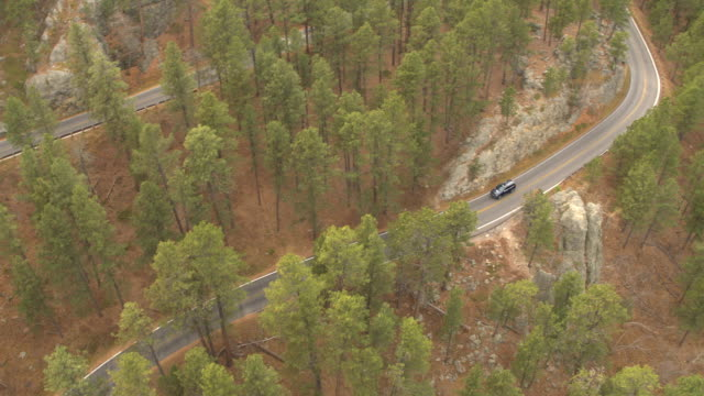 AERIAL: Black SUV jeep car driving on curvy mountain pass highway in pine forest video