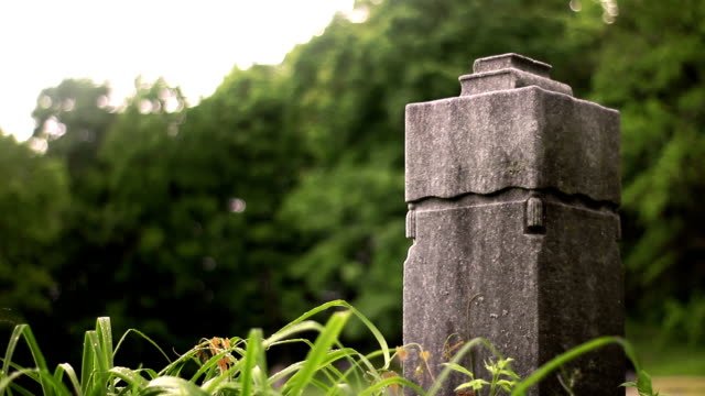 Blank Generic tribal greco roman rock cube ruined statue obelisk in wilderness video