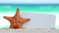 Blank white board and starfish on sand against turquoise caribbean sea water video