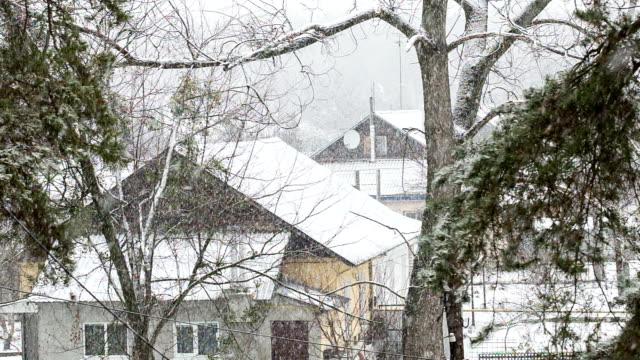 Blizzard in the Ukrainian village. video