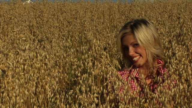Blond wheat video
