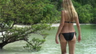 Blond woman exploring a wild tropical island amid unspoilt vegetation video