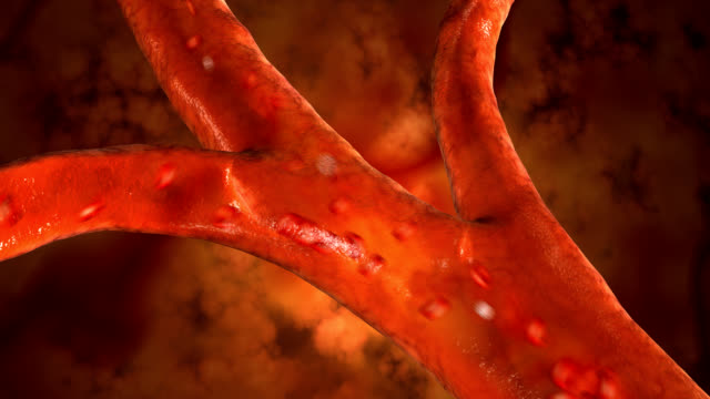 Blood cells pulsing down artery video